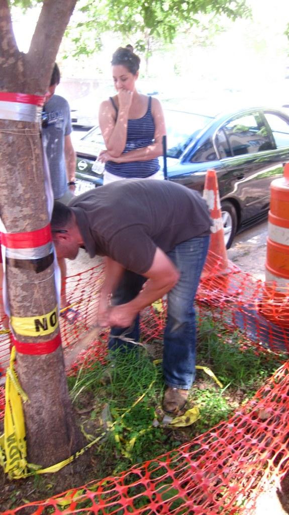 Dr. Schindler digging up wild garlic – no ground was off limits.