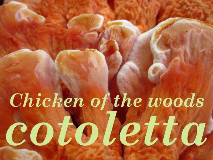 chicken title